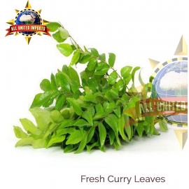 FRESH CURRY LEAVES 1 LB PACK
