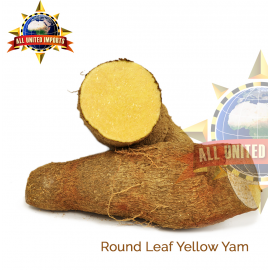 ROUND LEAF YELLOW YAM