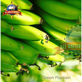 PLANTAIN GREEN [GUATEMALA]